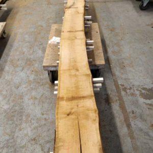 Wildkirsche Bohle 3.500 mm x 265 mm