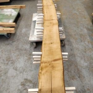 Wildkirsche Bohle 3.500 mm x 260 mm