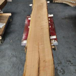Wildkirsche Bohle 2.530 mm x 335 mm