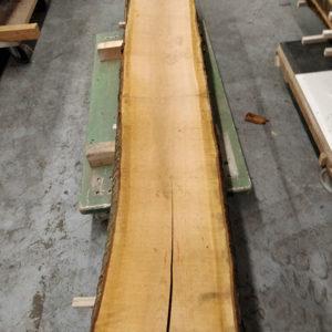 Wildkirsche Bohle 2.620 mm x 375 mm