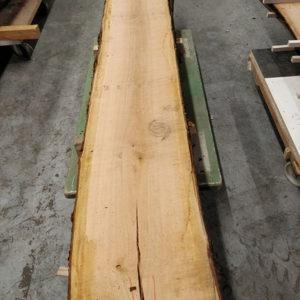 Wildkirsche Bohle 2.625 mm x 385 mm