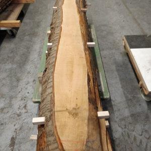 Wildkirsche Bohle 2.620 mm x 165 mm